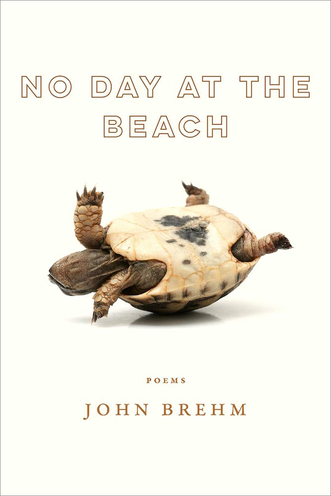 No Day at the Beach - poems by John Brehm